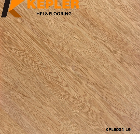 Vinyl Flooring Manufacturer 2MM Dry Back 6004-19